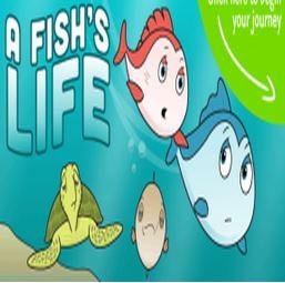 a-fish-life