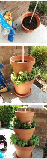 plantes-deux