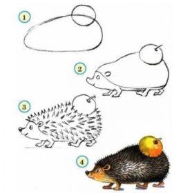 dessiner un herisson - dessiner des animaux