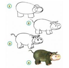 dessiner un hippopotame - dessiner des animaux