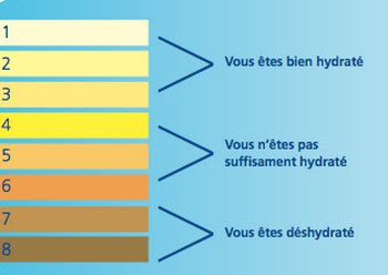 signification-couleur-urine