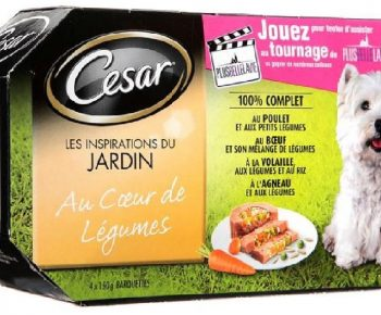coupon-cesar