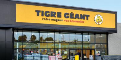 tigre geant concours carte cadeau
