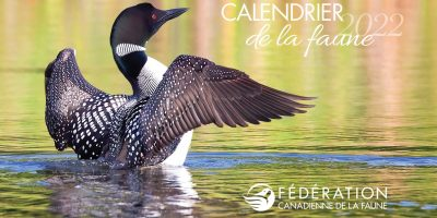 fcf calendrier annuel gratuit faune 2022